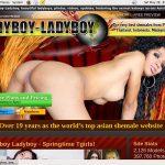 Free Ladyboy Ladyboy Code